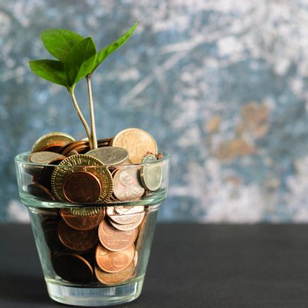 A plant growing from a coin flower pot